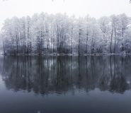 Winter. By the river Royalty Free Stock Images