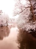 Winter. By the river Royalty Free Stock Photography