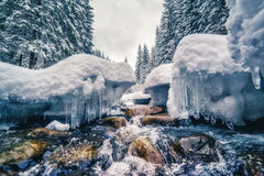 Winter River At Forest Stock Image