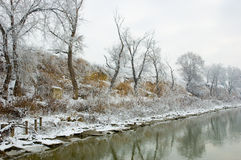 Winter river bank landscape Royalty Free Stock Photo