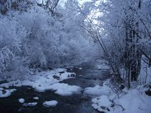 Winter on the River Stock Photography