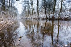Winter river in forest Royalty Free Stock Images