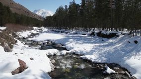 Winter river in the forest stock video footage