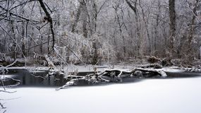 Winter on the River Royalty Free Stock Photos