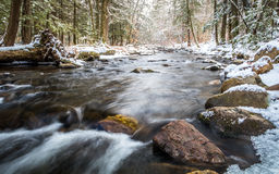 Winter river in the forest with river flowing gently. Along large rocks Royalty Free Stock Photo