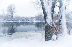 Winter river i Stock Photography