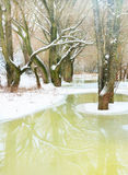 Winter river landscape Royalty Free Stock Photography