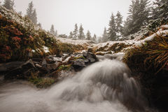 Winter river landscape in forest Stock Photography