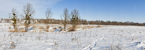 Winter river landscape panorama Royalty Free Stock Photos