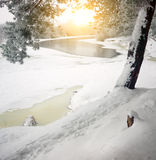 Winter river. Stock Images