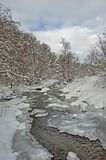 Winter river landscape with snow-covered trees on a cloudy day Royalty Free Stock Photography