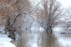 Winter river landscape Stock Photography