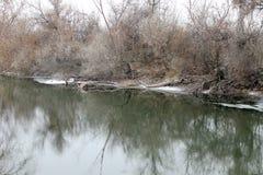Winter river. Nature fog park north travel stock photo