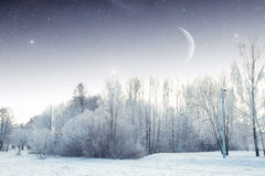 Winter river at night. landscape of Eastern Europe Royalty Free Stock Images