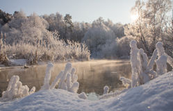 Winter on the River Royalty Free Stock Image