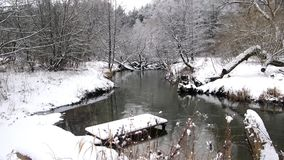 Winter river pond video forrest stock video
