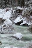 Winter River (portrait) Stock Photos