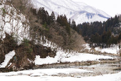 Winter river with snow all over and forest background Stock Photos