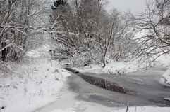 Winter by the river. The river in winter with snow covered trees Royalty Free Stock Photo