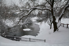 Winter by the river. On the river in winter with snow covered trees stock photography