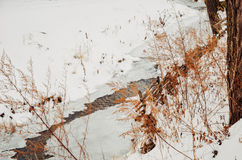 Winter river with snow and ice. Winter river with snow, ice and some plants Stock Photo