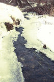 Winter river with snow and ice. Winter river with snow, ice and some plants Stock Photography