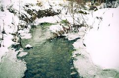 Winter river with snow and ice. Winter river with snow, ice and some plants Royalty Free Stock Photos