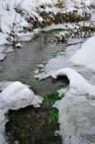 Winter river with snow and ice. Winter river with snow, ice and some plants Royalty Free Stock Photo