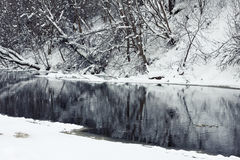 Winter river in snow with trees Stock Photography