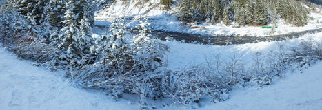 Winter river with snowy bushes. Royalty Free Stock Photos
