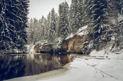 Winter by the river. With steep banks, calm flow and snowy forest Royalty Free Stock Images