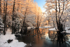 Winter river sunrise light. Scenic view of sunrise light reflection river in Wintry Stock Image