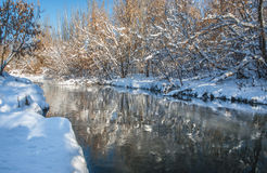 Winter river and trees in season Royalty Free Stock Image