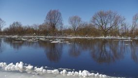 Winter river. And trees in winter season stock video