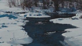 Winter river. winter landscape. Winter river. landscape Pine forest stock footage