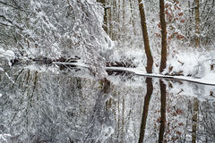 Winter river Stock Photography