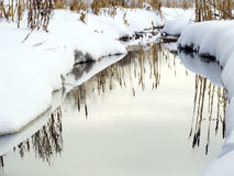 The winter river in a wood. The river with mirror water in a snow-covered winter wood Royalty Free Stock Photo