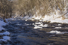 Winter River In The Woods Royalty Free Stock Images