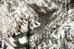 Winter River Yellowstone Stock Photos