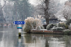 Winter on the RiverThames Royalty Free Stock Images