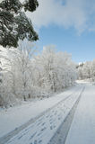 Winter road. Rural road in winter covered in snow Royalty Free Stock Images