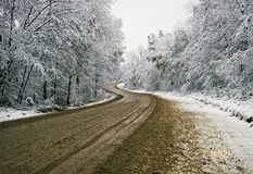 Winter road. Road in the snow-covered forest Stock Image