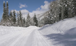 Free Winter Road Stock Photography - 1183312