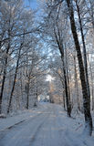 Winter road. A snowy road wintertime in Sweden Stock Photography