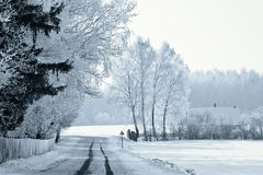 A winter road Royalty Free Stock Images
