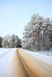 A winter road Royalty Free Stock Photo