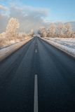Winter road. In very cold winter morning with frosty tree royalty free stock images