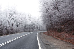 Winter road. Winter curved icy road and fog Stock Photos