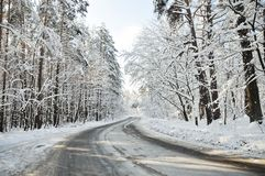 Winter road. A road through snowy forest (winter Royalty Free Stock Photo