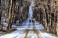 Winter Road. A rural road in Metamora Michigan royalty free stock photo
